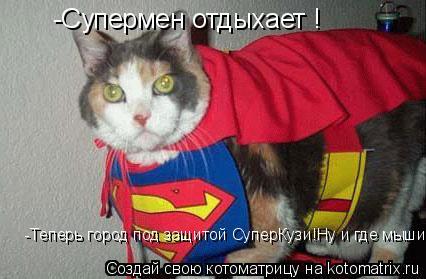 Котоматрица: -Супермен отдыхает ! -Теперь город под защитой СуперКузи!Ну и где мыши?