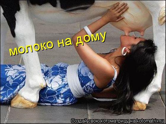 Котоматрица: молоко на дому
