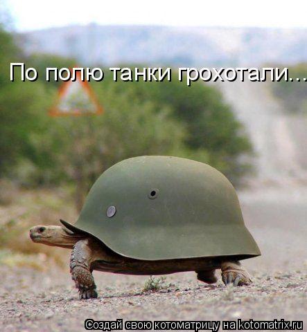 Котоматрица: По полю танки грохотали...