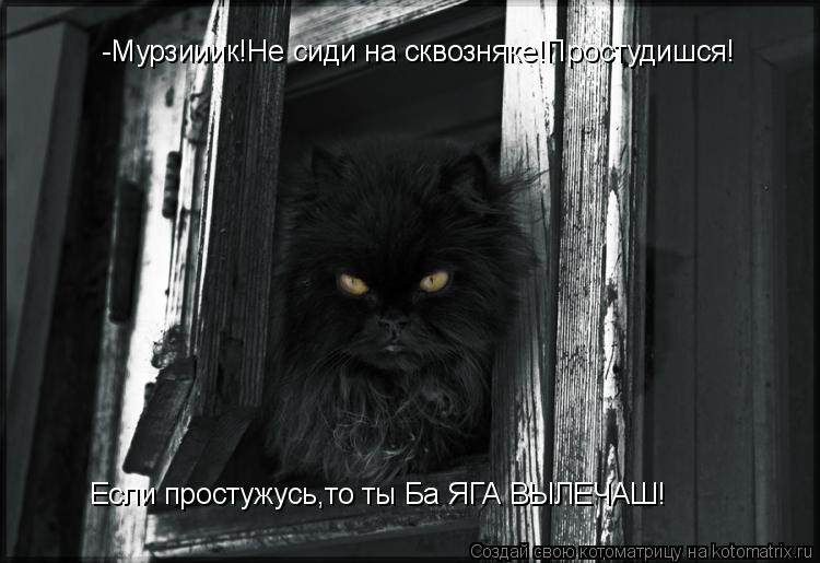 Котоматрица: -Мурзииик!Не сиди на сквозняке!Простудишся! Если простужусь,то ты Ба ЯГА ВЫЛЕЧАШ!