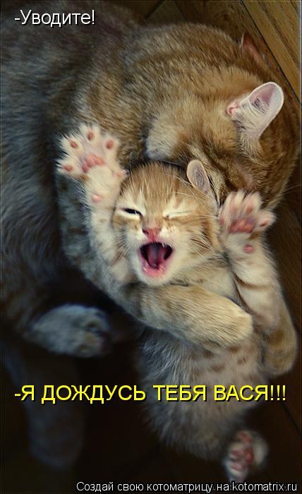 Котоматрица: -Уводите! -Я ДОЖДУСЬ ТЕБЯ ВАСЯ!!!