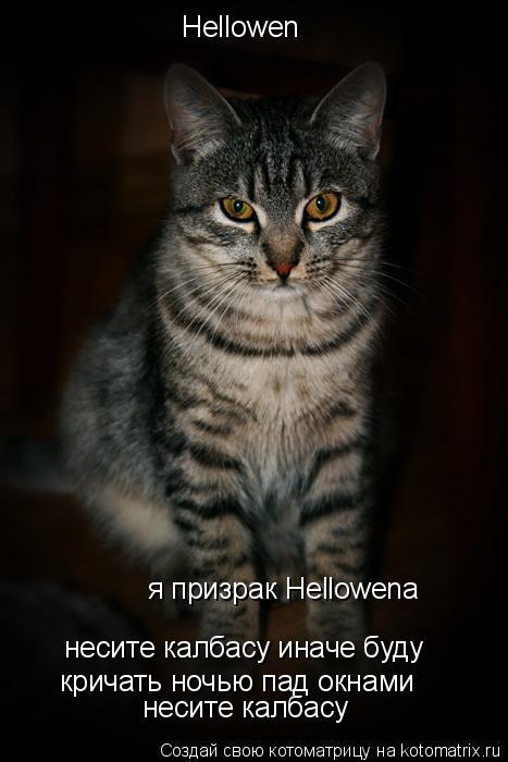 Котоматрица: Hellowen я призрак Hellowena несите калбасу иначе буду кричать ночью пад окнами несите калбасу