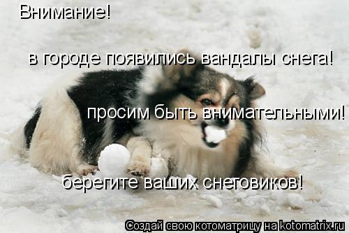Котоматрица: Внимание!  в городе появились вандалы снега!  просим быть внимательными! берегите ваших снеговиков!