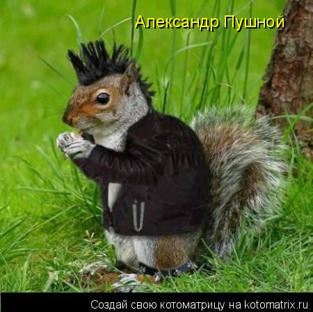 Котоматрица: Александр Пушной