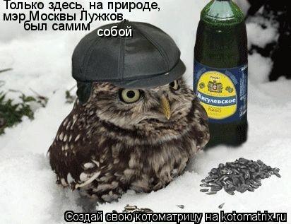 Котоматрица: Только здесь, на природе,  мэр Москвы Лужков, был самим   собой