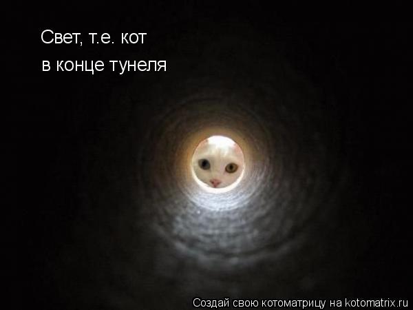 Котоматрица: Свет, т.е. кот в конце тунеля