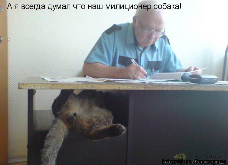 Котоматрица: А я всегда думал что наш милиционер собака!