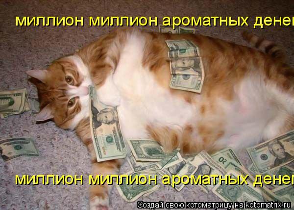 Котоматрица: миллион миллион ароматных денег миллион миллион ароматных денег