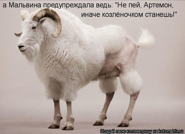 """Котоматрица: а Мальвина предупреждала ведь: """"Не пей, Артемон, иначе козлёночком станешь!"""""""