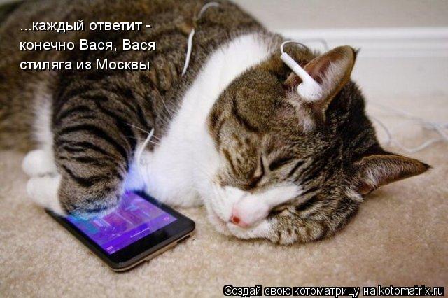 Котоматрица: ...каждый ответит - конечно Вася, Вася стиляга из Москвы