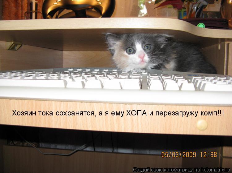 Котоматрица: Хозяин тока сохранятся, а я ему ХОПА и перезагружу комп!!!
