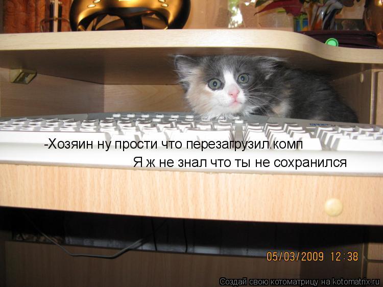 Котоматрица: -Хозяин ну прости что перезагрузил комп  Я ж не знал что ты не сохранился
