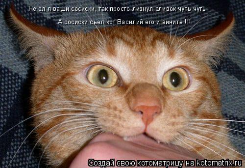 Котоматрица: Не ел я ваши сосиски, так просто лизнул сливок чуть чуть    А сосиски съел кот Василий его и вините !!!
