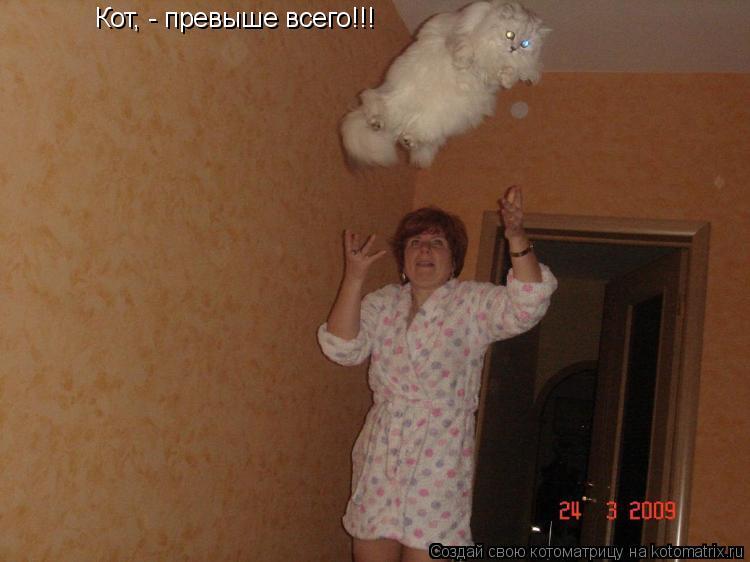 Котоматрица: Кот, - превыше всего!!!