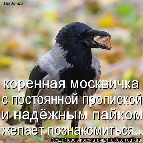 Котоматрица: коренная москвичка с постоянной пропиской и надёжным пайком желает познакомиться...