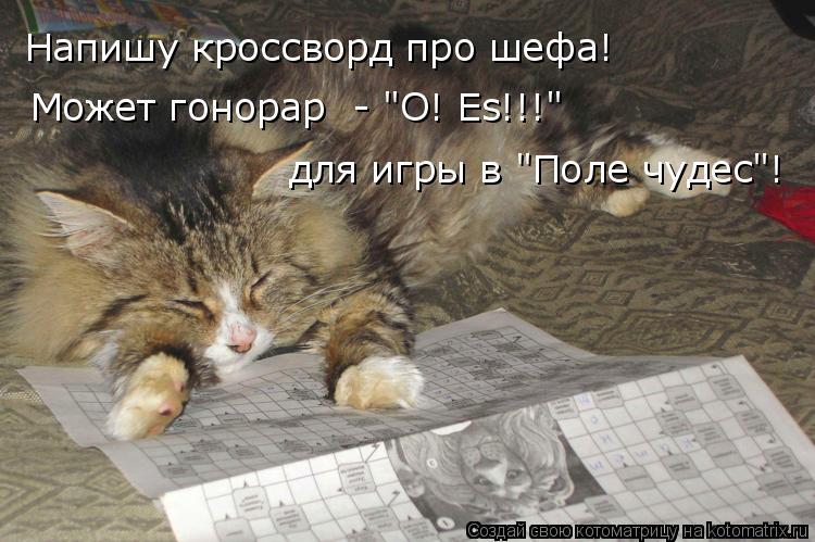 """Котоматрица: Напишу кроссворд про шефа! Может гонорар  - """"O! Es!!!"""" для игры в """"Поле чудес""""!"""