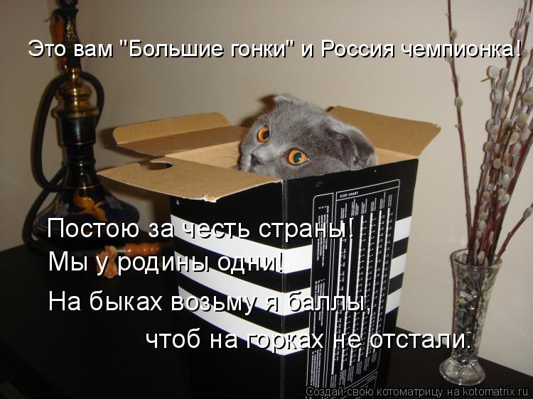 """Котоматрица: Это вам """"Большие гонки"""" и Россия чемпионка! Постою за честь страны! Мы у родины одни! На быках возьму я баллы, чтоб на горках не отстали."""