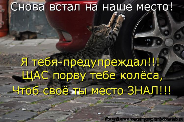 Котоматрица: Снова встал на наше место! Я тебя-предупреждал!!! ЩАС порву тебе колёса, Чтоб своё ты место ЗНАЛ!!!