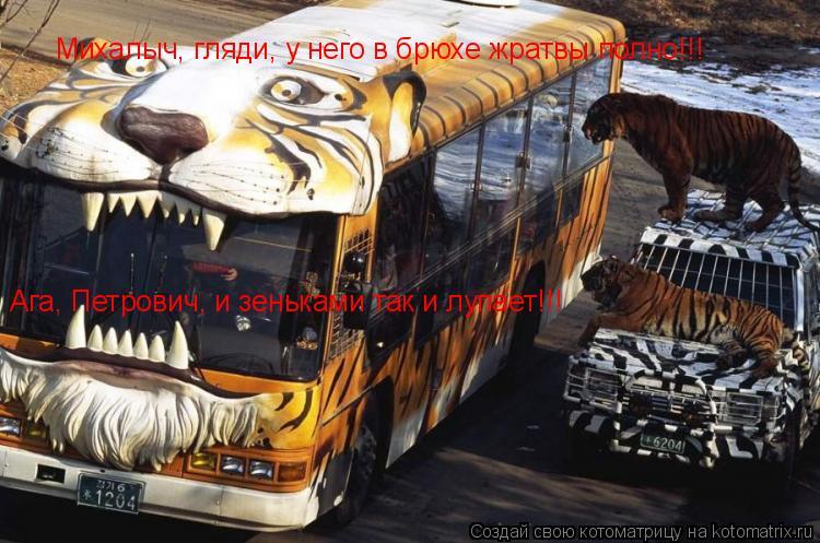 Котоматрица: Михалыч, гляди, у него в брюхе жратвы полно!!! Ага, Петрович, и зеньками так и лупает!!!