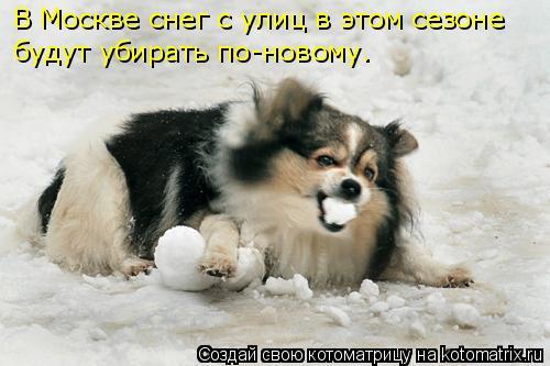 Котоматрица: В Москве снег с улиц в этом сезоне будут убирать по-новому.