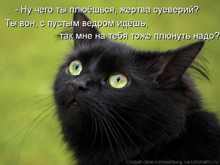 Котоматрица: - Ну чего ты плюёшься, жертва суеверий? Ты вон, с пустым ведром идёшь,  так мне на тебя тоже плюнуть надо?