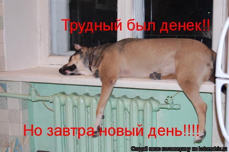 Котоматрица: Трудный был денек!! Но завтра новый день!!!!