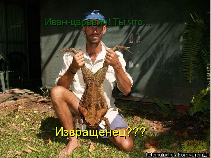 Котоматрица: Иван-царевич! Ты что... Извращенец???