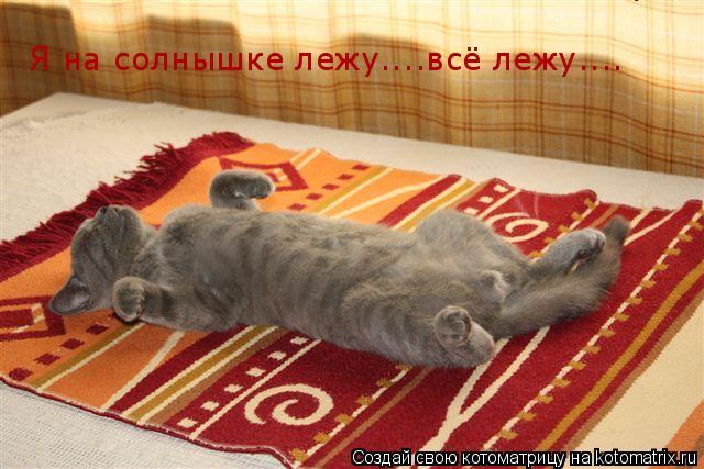 Котоматрица: Я на солнышке лежу....всё лежу.... Я на солнышке лежу....всё лежу.... Я на солнышке лежу....всё лежу....