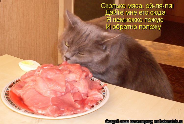 Котоматрица: Сколько мяса, ой-ля-ля! Дайте мне его сюда. Я немножко пожую И обратно положу.