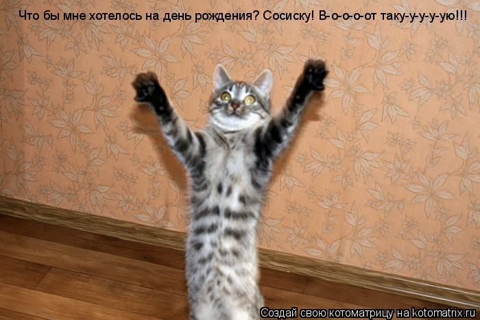 Котоматрица: Что бы мне хотелось на день рождения? Сосиску! В-о-о-о-от таку-у-у-у-ую!!!