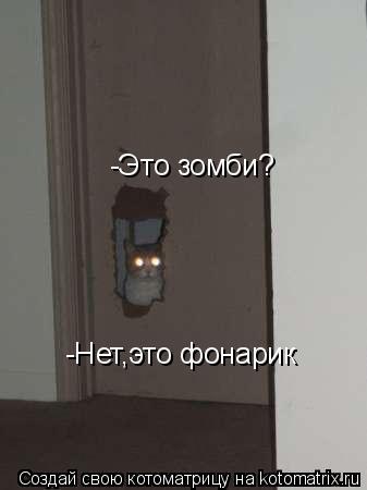 Котоматрица: -Это зомби? -Нет,это фонарик