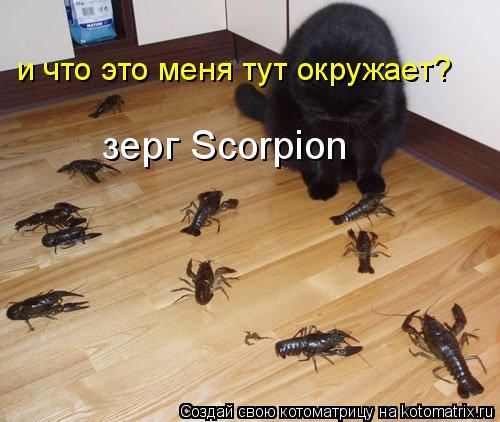 Котоматрица: зерг Sсorpiоn и что это меня тут окружает?