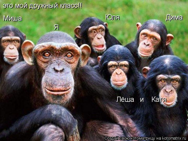 Котоматрица: это мой дружный класс!! Миша Юля                        Дима Лёша   и    Катя Я