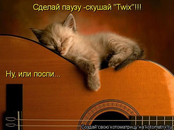 "Котоматрица: Сделай паузу -скушай ""Twix""!!! Ну, или поспи..."