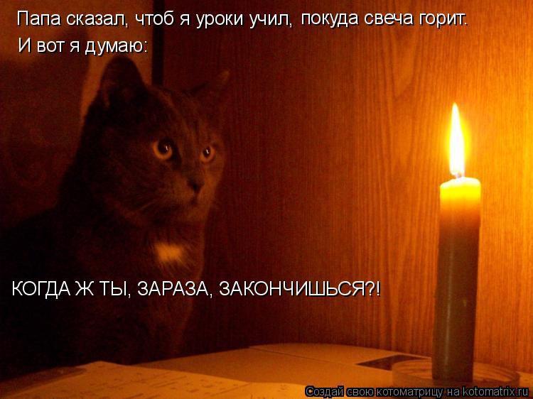 Котоматрица: Папа сказал, чтоб я уроки учил, покуда свеча горит. И вот я думаю: КОГДА Ж ТЫ, ЗАРАЗА, ЗАКОНЧИШЬСЯ?!