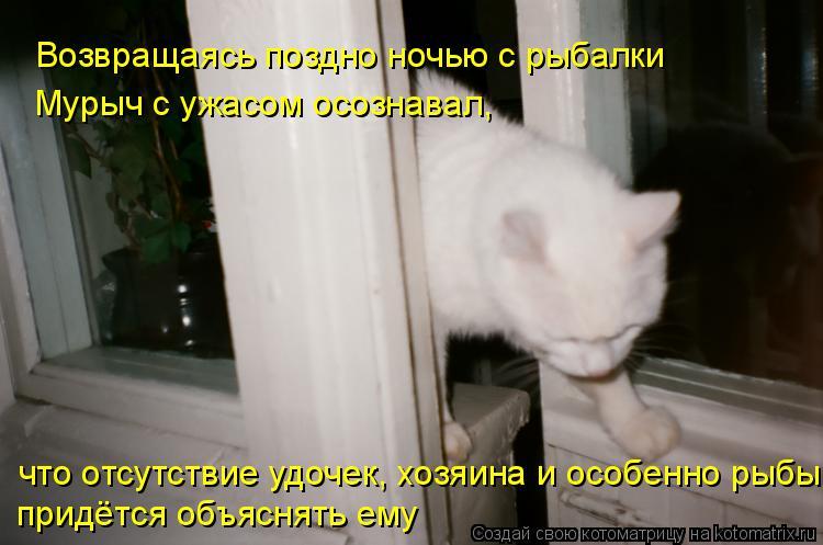 Котоматрица: Возвращаясь поздно ночью с рыбалки Мурыч с ужасом осознавал, что отсутствие удочек, хозяина и особенно рыбы придётся объяснять ему
