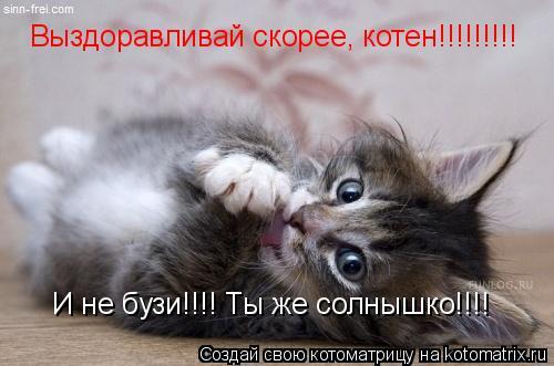 Котоматрица: Выздоравливай скорее, котен!!!!!!!!! И не бузи!!!! Ты же солнышко!!!!
