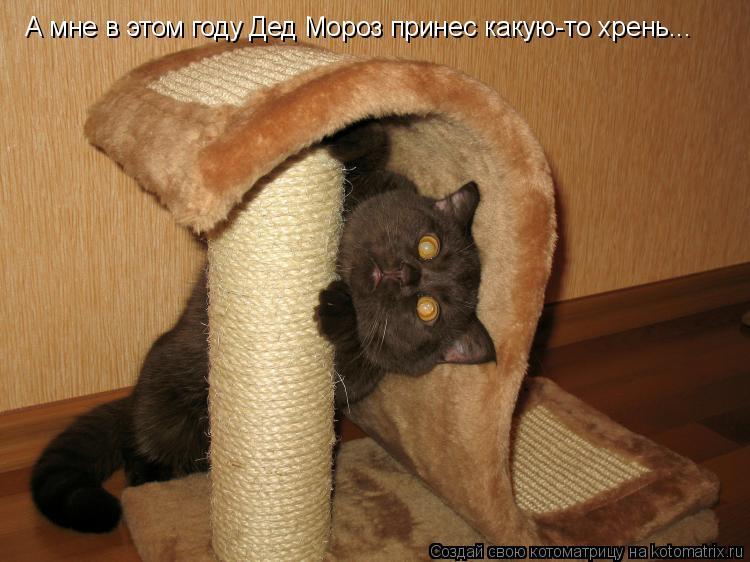 http://kotomatrix.ru/images/lolz/2009/11/01/393232.jpg