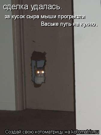 Котоматрица: сделка удалась. за кусок сыра мыши прогрызли Ваське путь на кухню.