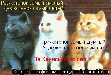 Котоматрица: Раз-котенок самый смелый, Два-котенок самый белый, Три-котенок самый шумный, А где же наш самый умный? За Клинским пошел...
