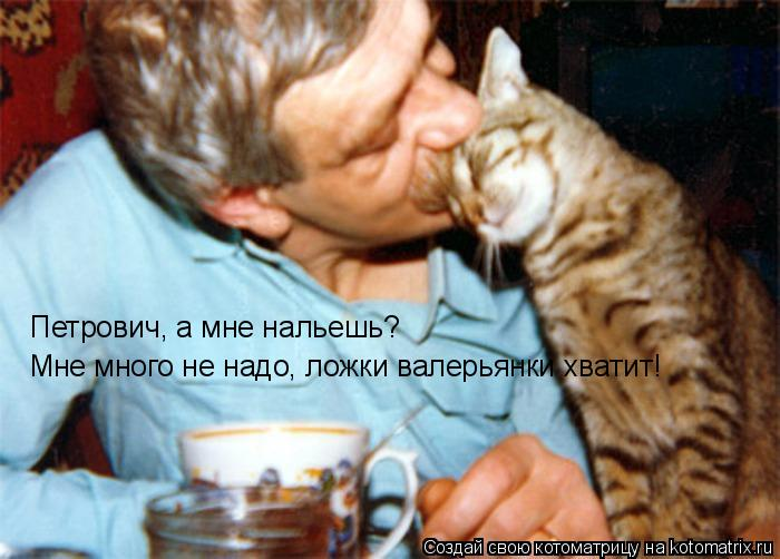 Котоматрица: Петрович, а мне нальешь? Мне много не надо, ложки валерьянки хватит!