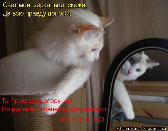 Котоматрица: Свет мой, зеркальце, скажи, Да всю правду доложи... Ты прекрасна спору нет, Но румяней и белее одновременно -  это НОНСЕНС!
