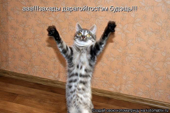 Котоматрица: ааа!!!захады дарагой!гостэм будэщь!!!