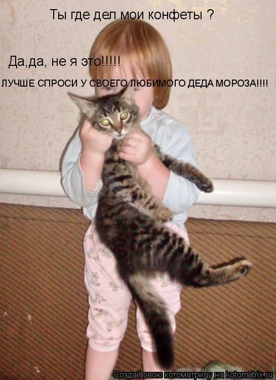 Котоматрица: Ты где дел мои конфеты ? Да,да, не я это!!!!! ЛУЧШЕ СПРОСИ У СВОЕГО ЛЮБИМОГО ДЕДА МОРОЗА!!!!