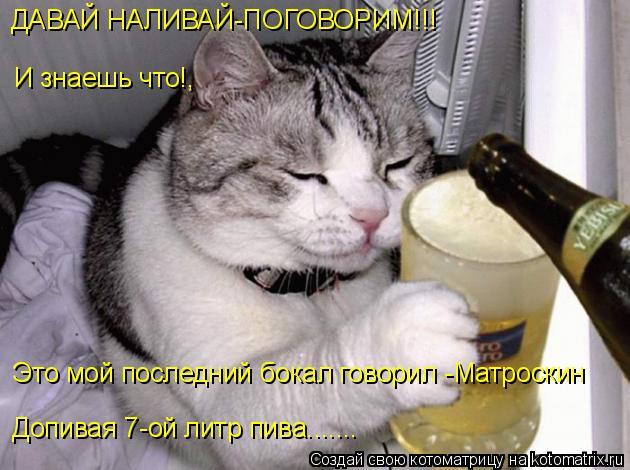 Котоматрица: ДАВАЙ НАЛИВАЙ-ПОГОВОРИМ!!! И знаешь что!,  Это мой последний бокал говорил -Матроскин  Допивая 7-ой литр пива.......