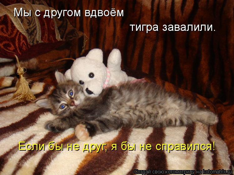 Котоматрица: Мы с другом вдвоём  тигра завалили. Если бы не друг, я бы не справился!