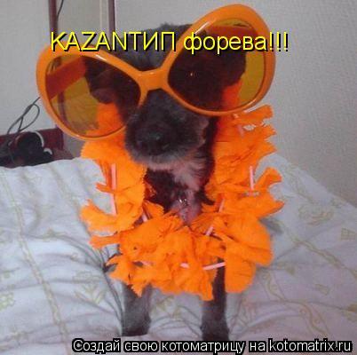 Котоматрица: KAZANTИП форева!!!