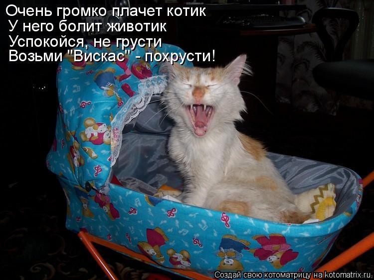 """Котоматрица: Очень громко плачет котик У него болит животик Успокойся, не грусти Возьми """"Вискас"""" - похрусти!"""