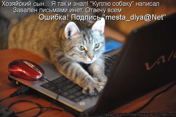 """Котоматрица: Завален письмами инет. Отвечу всем :   Ошибка! Подпись """"mesta_dlya@Net"""" Хозяйский сын... Я так и знал! """"Куплю собаку"""" написал"""