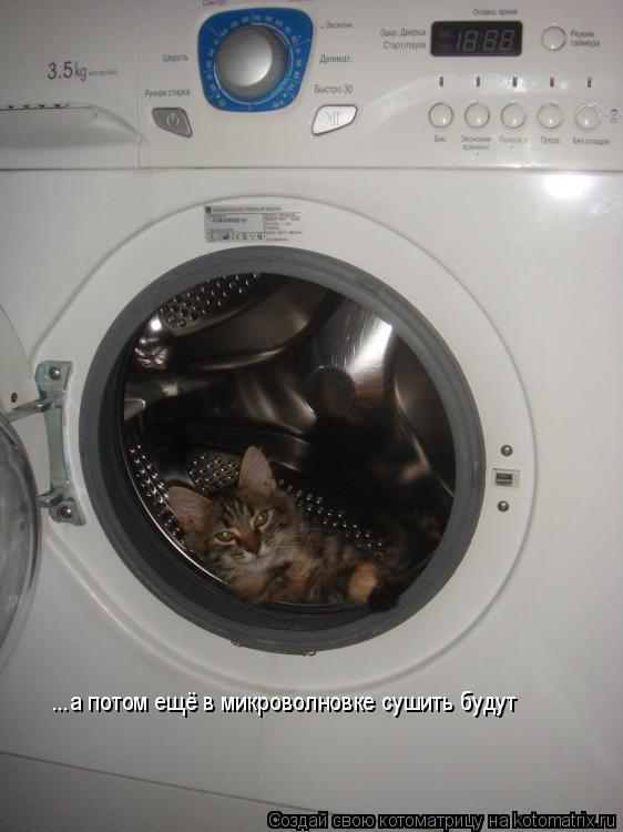 Котоматрица: ...а потом ещё в микроволновке сушить будут